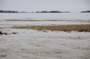 Saskatchewan field conditions April 19, 2013