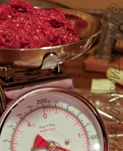 weighing venison