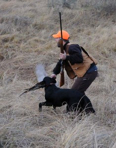 dog, hunter, and downed pheasant