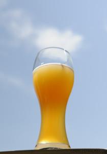 Nokomis Craft Ale - Wheat Ale