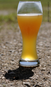 Nokomis Craft Ales - American Wheat Ale