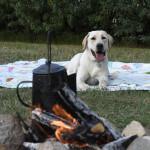 A Merrick Backcountry Adventure #wild4backcountry